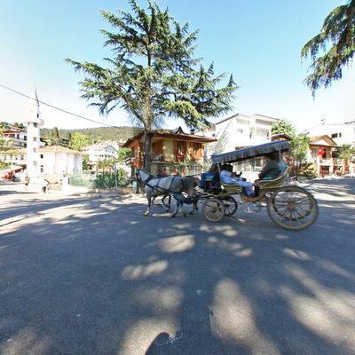 Büyükada - Nizam Caddesi 3