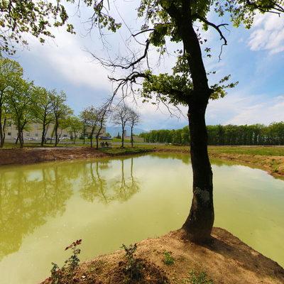 Muncurlu Park Göleti 3