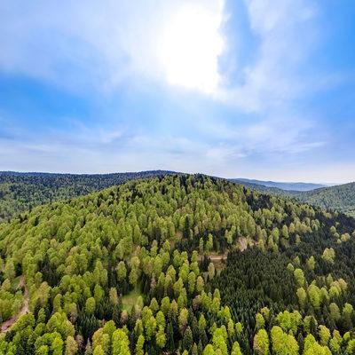 Torkul Göleti 360 Hava Panorama - İlkbahar