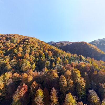 Güzeldere Mesire - Sonbahar