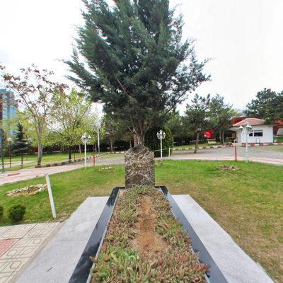 Alparslan Türkeş - Önü