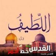 AbdullahAlmasry